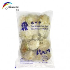 10-12CM半殼扇貝